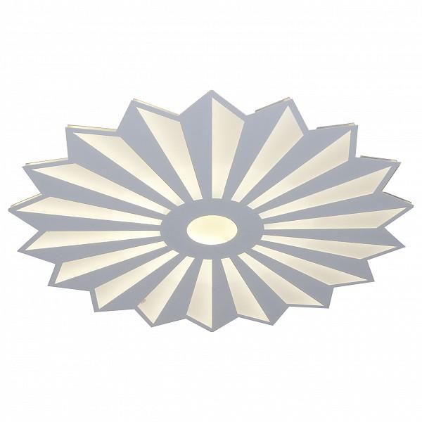 Накладной светильник Алтея 05813-15.01 фото