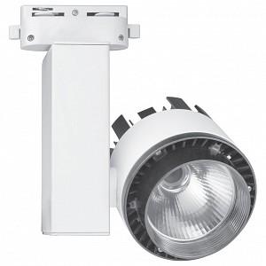Светильник на штанге Volpe 10961