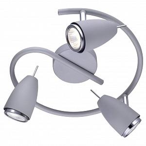 Спот с тремя лампами Regista AR_A1966PL-3GY