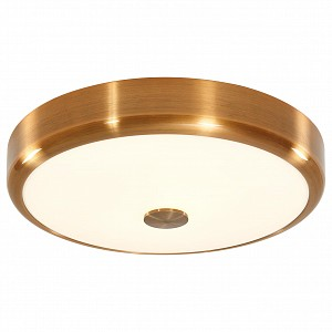 Накладной светильник Фостер-1 CL706132