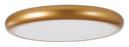 Светодиодный светильник Smiler Favourite (Германия)