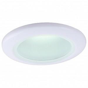 Потолочный светильник для ванной Aqua AR_A2024PL-1WH