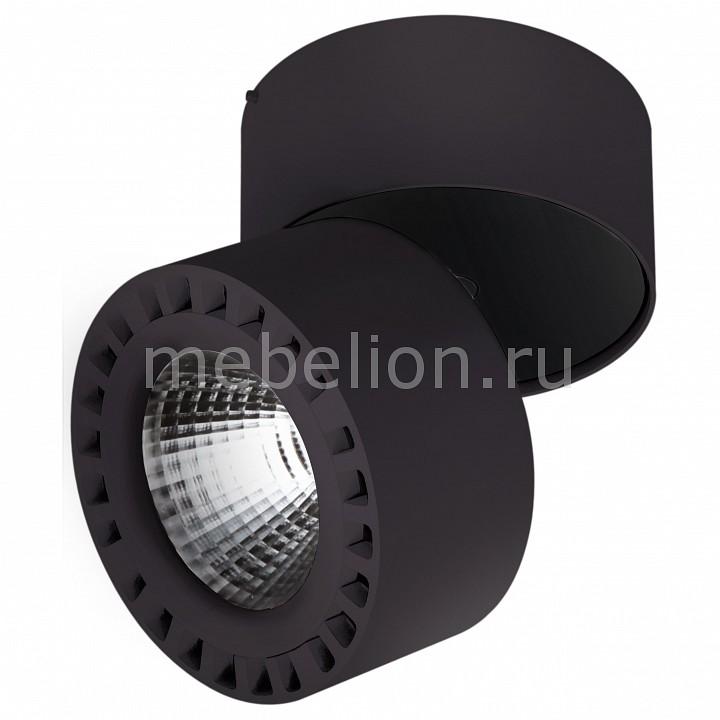 Купить Светильник на штанге Forte 381373, Lightstar
