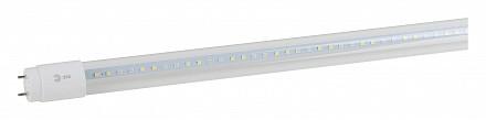 Лампа светодиодная [LED] Эра G13 18W 1200K
