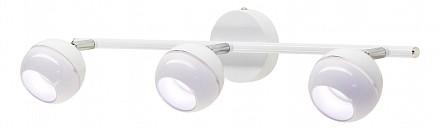 Спот потолочный LED Раймонд CL555530