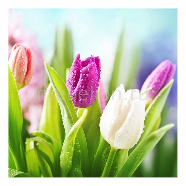 Панно Ekoramka (30х30 см) Тюльпаны 17176301К3030 картина птичка 30х30 см