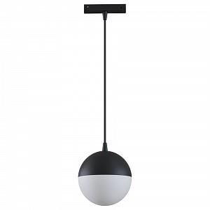Подвесной светильник Track lamps TR018-2-10W4K-B