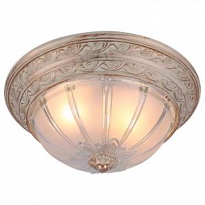 Потолочный светильник 2 лампы Piatti AR_A8014PL-2WA