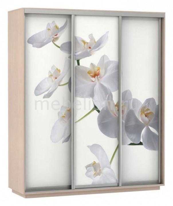 Шкаф-купе Экспресс Фото 3 Белая орхидея