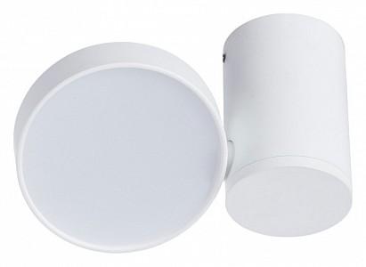 Светильник на штанге Casa 1486/03 PL-1