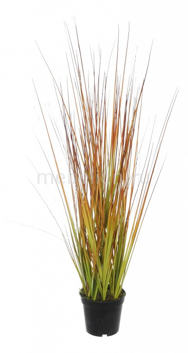 Растение в горшке Home-Religion (50 см) Трава 58005500 растение в горшке home religion 37 см трава 58005400