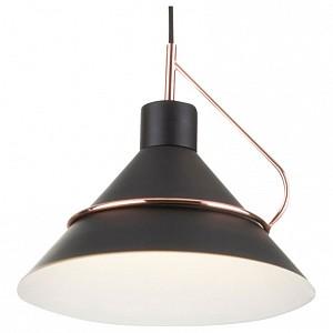 Подвесной светильник Amis FR5025PL-01B