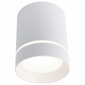 Накладной светильник 1909 A1909PL-1WH
