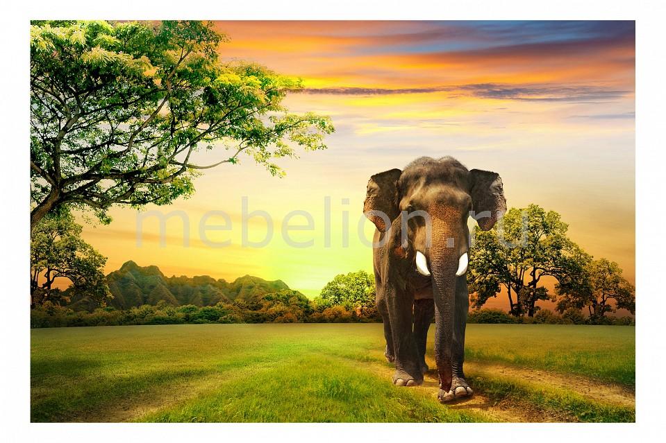 Панно Ekoramka (60х40 см) Слон 119728996