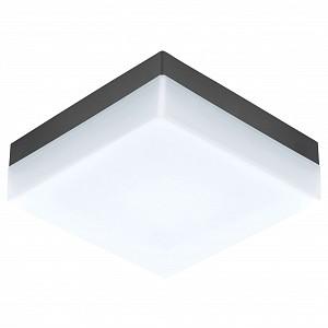 Накладной светильник Sonella 94872