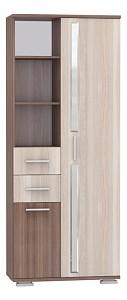 Комбенированый шкаф Дарси MOB_Darsi1_shimo