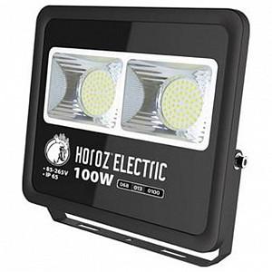 Настенно-потолочный прожектор Horoz Electric Lion HRZ11100043