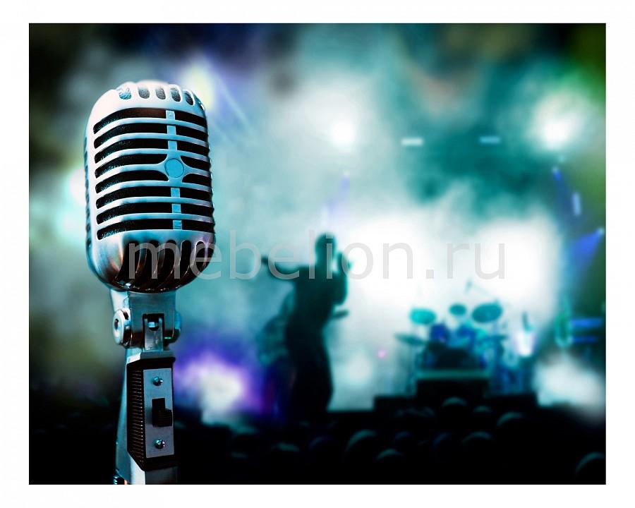 Панно Ekoramka (50х40 см) Микрофон 1709027К5040
