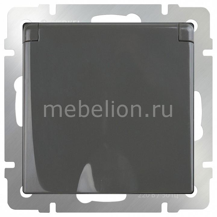 Розетка Werkel WRK_a029864 от Mebelion.ru
