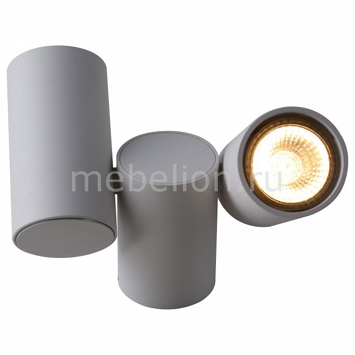 Настенный светильник Divinare DV_1354_03_PL_2 от Mebelion.ru