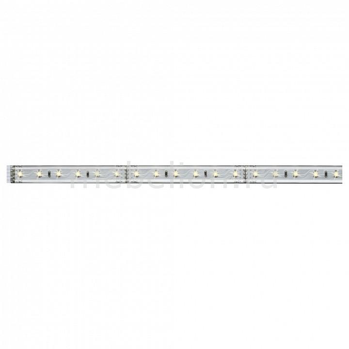Купить Лента светодиодная [50 см] MaxLED 70661, Paulmann, серый, полимер