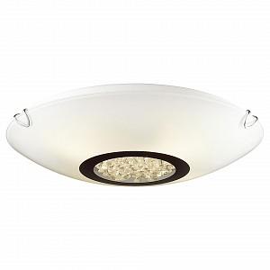Накладной светильник Funken 1694-2C