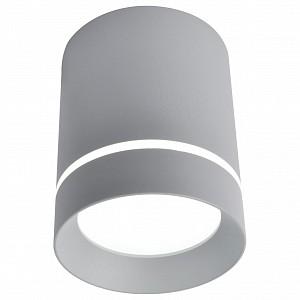 Накладной светильник 1909 A1909PL-1GY