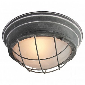 Накладной потолочный светильник LSP-988 LSP-9881