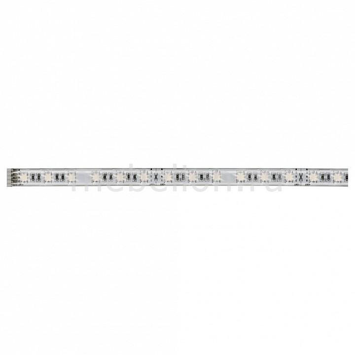 Купить Лента светодиодная [50 см] MaxLED 70633, Paulmann, серый, полимер