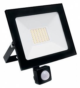 Настенный прожектор SFL80-20 29524
