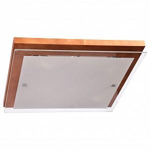 Накладной потолочный светильник Эко DU_106-21-24_2H