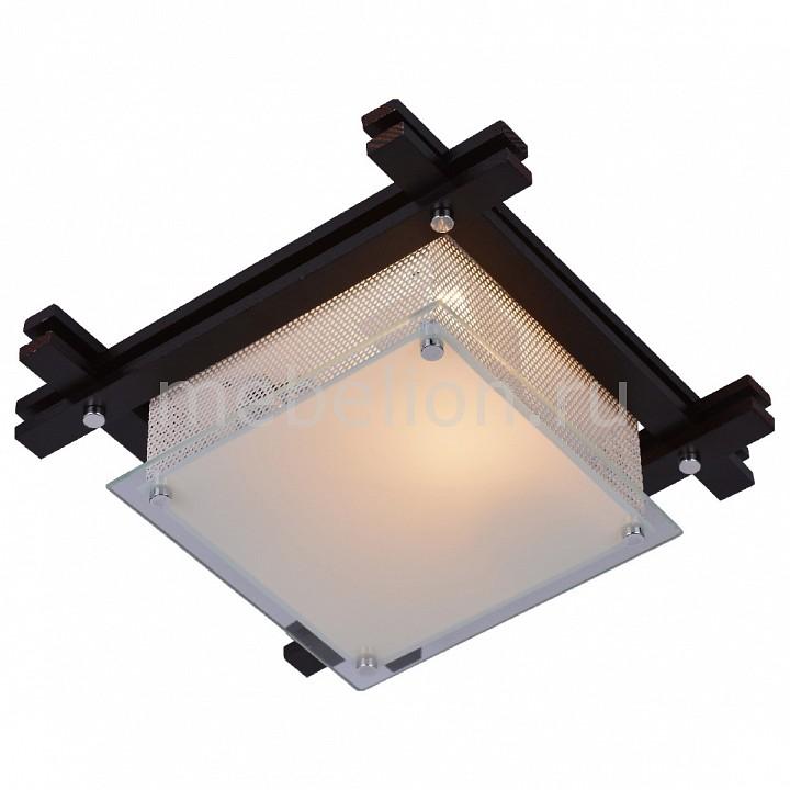Купить Накладной светильник 6463 A6463PL-1BR, Arte Lamp, Италия