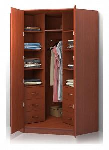 Угловой шкаф для прихожей Alisa BRN_517