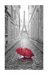 Картина (30х50 см) Красный зонт HE-101-487
