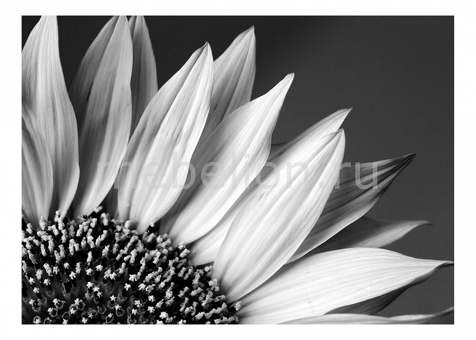 Панно Ekoramka (70х50 см) Цветок 1727013 смесь универсальная каменный цветок м150 25 кг