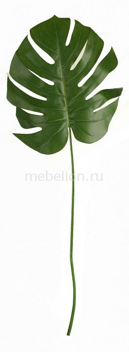 Зелень Home-Religion (104 см) Лист монстеры 58001700