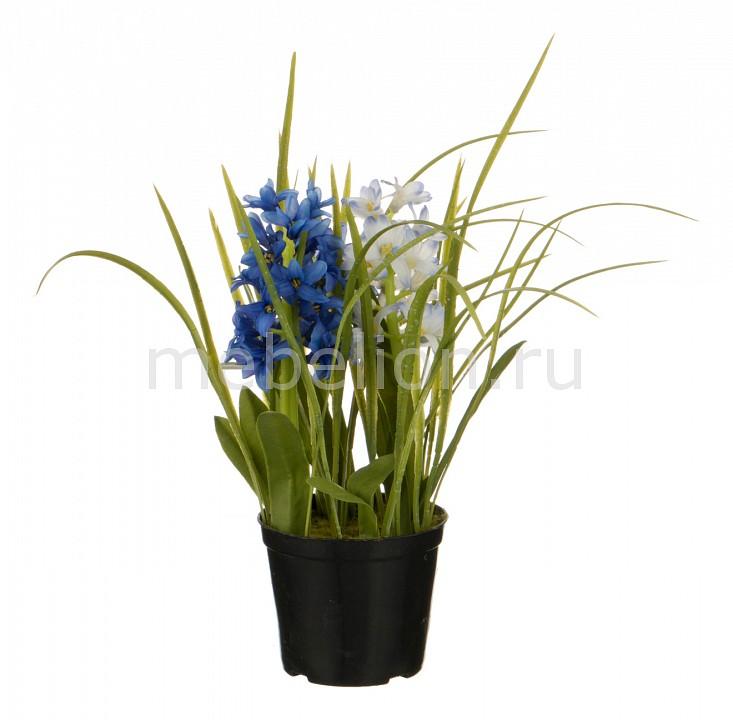 Растение в горшке АРТИ-М (32 см) Гиацинт 654-191 tamaris 1 1 28108 28 191