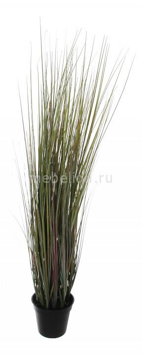 Растение в горшке Home-Religion (90 см) Трава 58006100 растение в горшке home religion 37 см трава 58005400