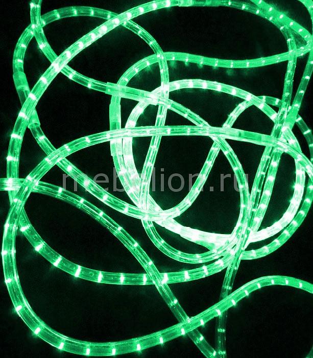 Шнур световой RL-DL-2WH-100-240-G