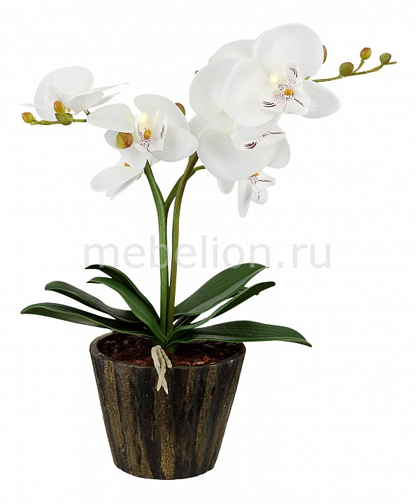 Растения в горшке Globo FlowerPower 28002 настольная лампа globo flowerpower 28002