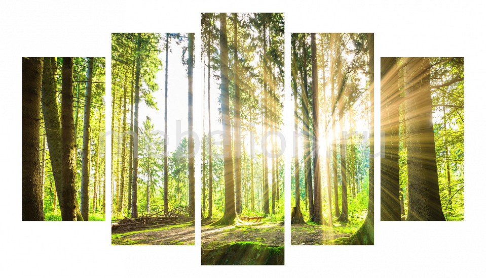 Набор панно Ekoramka Набор из 5 панно (1350х820 см) Солнце в лесу 1768582М13582 цена