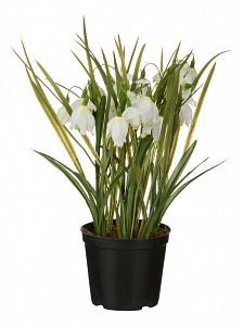 Растение в горшке (33 см) Подснежники 654-190
