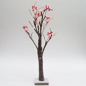 Яблоня световая (0.6 м) LT042 26864