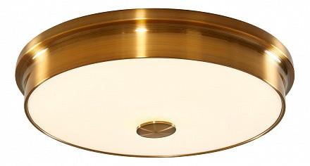 Накладной светильник Фостер-2 CL706232