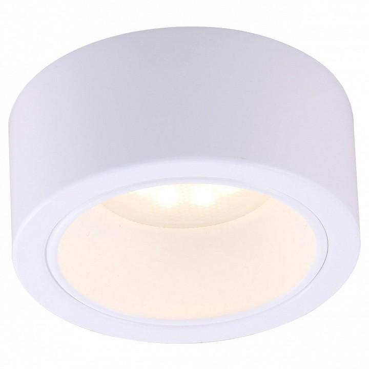 Настенный светильник Arte Lamp AR_A5553PL-1WH от Mebelion.ru