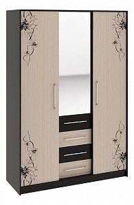Платяной шкаф для гостиной Бостон SMT_113235