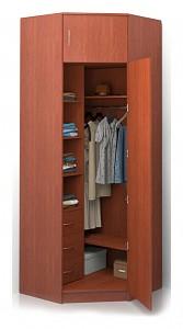 Угловой шкаф для прихожей Alisa BRN_525