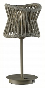 Настольная лампа декоративная Polinesia 7134
