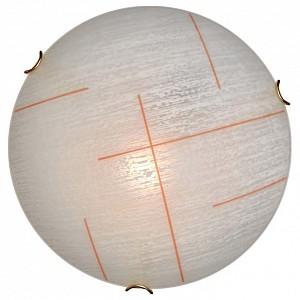 Накладной светильник Lint Orange 254/CL