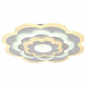 Накладной потолочный светильник 220v Ledolution FV_2286-5C